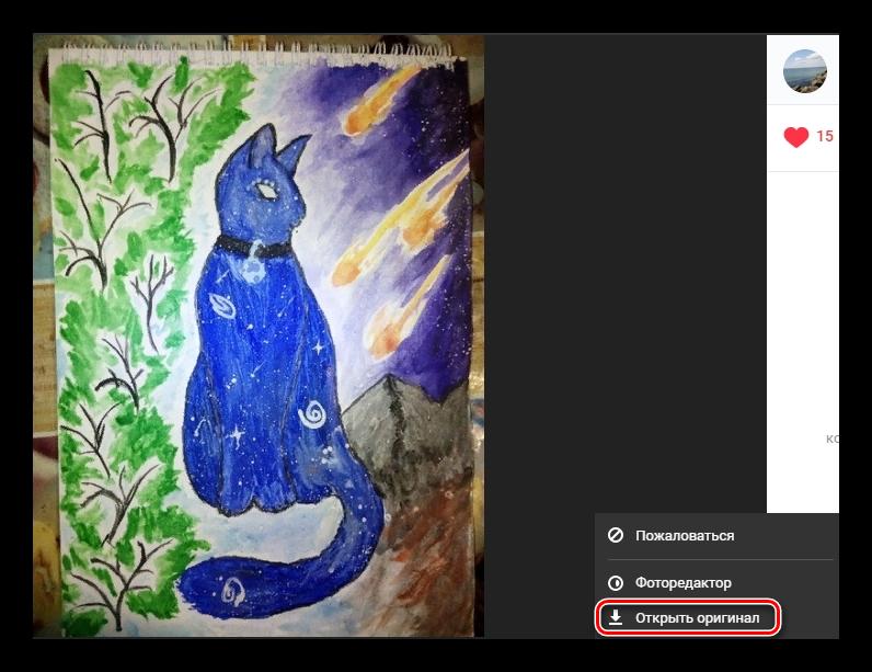 Открытие оригинала фото в ВКонтакте