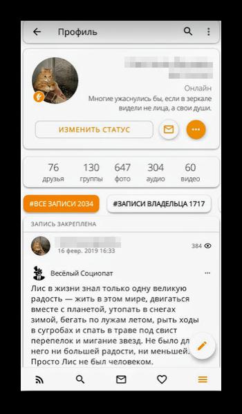Интерфейс ВК Феникс