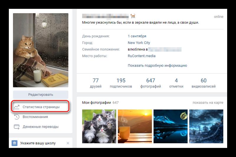 Просмотр статистики своей страницы ВКонтакте