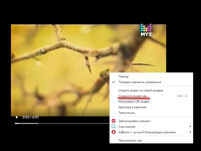 Скачивание видео из ВК через панель разработчика